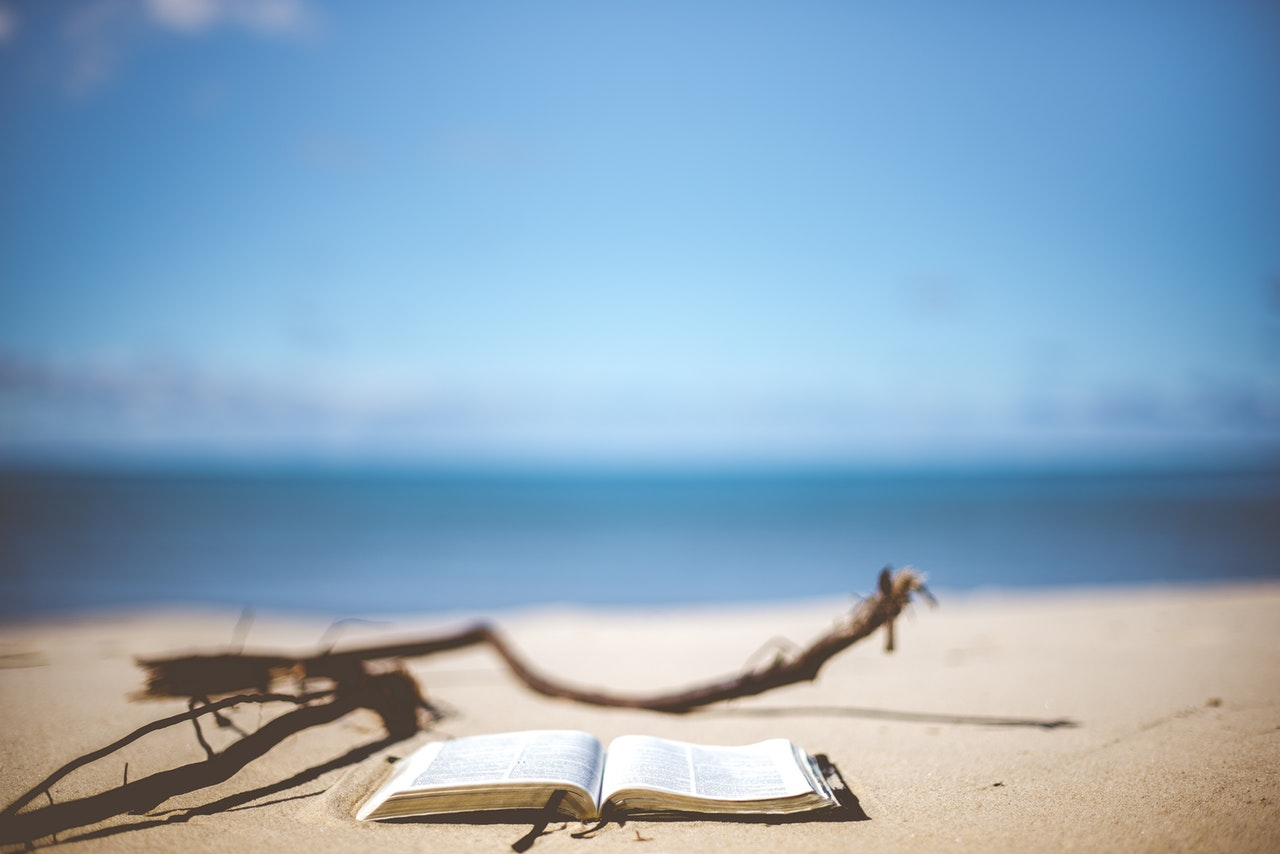 knjiga, Literatura za plažu: Top 5 knjiga koje morate pročitati ovog leta
