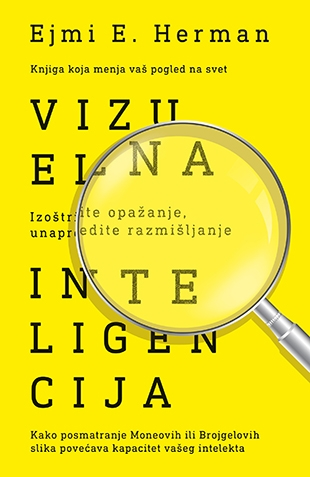 Vizuelna inteligencija