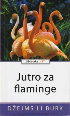 Jutro za flaminge