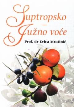 Suptropsko – južno voće